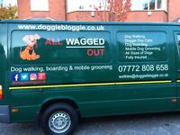 Professional and experienced dog walking and home boarding services, Didsbury, South Manchester