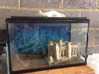 Two fish tanks