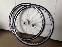 Shimano RS80 700cc wheelset with Schwalbe Ultremo R.1 tyres - MINT CONDITION