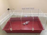 Large rabbit cage and water bottle