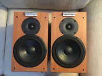 Audio Vector Series C1 Speakers (pair) Natural Beech