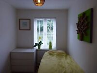 Oval/Camberwell-nice room for single person