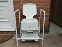 flushable portable toilet and frame