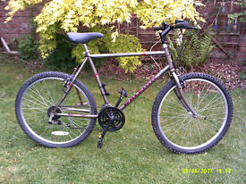 RALEIGH BREAKER MOUNTAIN BIKE ONE OF MANY QUALITY BICYCLES FOR SALE