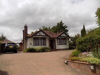 Well Presented Spacious 3/4 Bedroom Bungalow Close to M1 Motorway and Hospital Available Now No DSS
