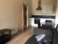 Luxury studios and one beds - DSS accepted - Serviced Apartments - NO DEPOSIT and NO SET UP FEES