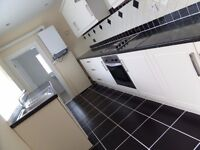 Spacious! DSS ACCEPTED!! 2 Bed house, Kismet Street, Southwick, Sunderland, SR5 2LG
