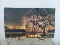 Canvass prints