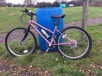 "Ladies Lambada Bike - 24"" wheels"