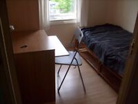 Lovely single room in friendly houseshare - Blackhorse Road / Walthamstow