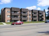 Large 2 Bedroom in Prince Albert