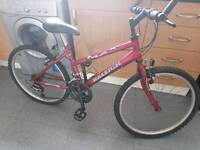 Girls/woman's Raleigh bike