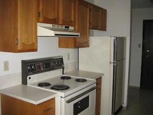 1 Bdrm w/ Balcony, Dishwasher & FREE Cable ~ The Manning