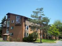 $500 BONUS, LARGE UNITS, QUIET & CLEAN BUILDING, CLAYTON PARK