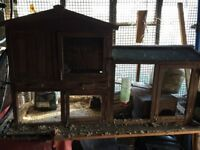 Rabbit Guinea Pig Hutch with accessories