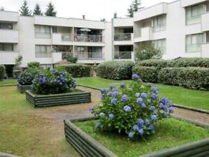 Sherwood Apartments - 1 Bedroom Apartment for Rent