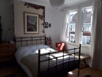 Large double room in friendly house share (Dec - Mar)