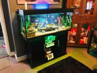Jewel fish tank 4ft