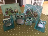Owl collection.