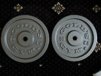 Gold's Gym Cast Iron Disc Weights - 2 x 10kg