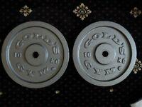 Gold's Gym Cast Iron Disc Weights - 2 x 10kg