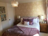 Mauve/purple bedroom accessories