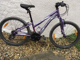 Specialized Hotrock, girls mountain bike