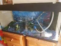 Gravel fish tank