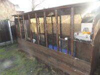 Outdoor Bird Aviary - Dog Kennel -Pet Kennel