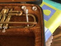 Trumpet ideal starter instrument