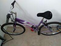 "Ladies Universal Eclipse 18"" Frame, 18 Speed, Bike Bicycle"