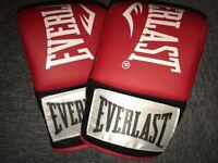 EVERLAST boxing mits••UNUSED••