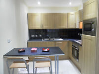 AVAILABLE NOW -1 Bedroom Student Flat, Selly Oak, £750pcm NO DSS