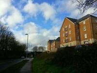 Swap 2 bed flat Farley Fields