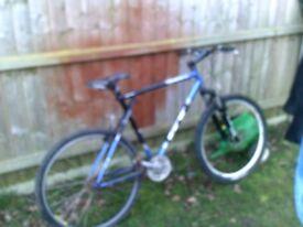 gt boulder push bike