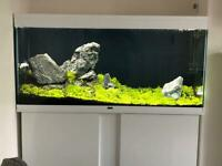 Large Ciano 120 Aquarium Fish Tank with Brand New stand!