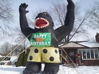 birthday Inflatables all types call Inflatable Signs 226 2460778