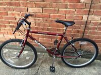 """Red Mountain Bike suite boy or girl age 10+, 10 speed, 17"""" frame for sale in good condition. £20.00"""