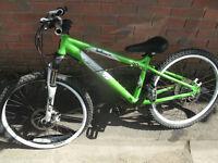 Carrera Blast Kids Bike Project