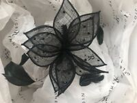 Back fascinators