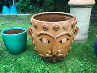 Selection of terracotta garden pots and ornaments.