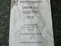 bilton cougars under 12s looking for players