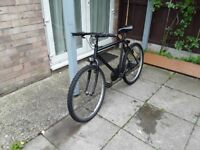 £35 nice bike 26 wheel 21 frame 15 gears all working in good condition can deliver local for petrol