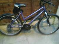 LADIES APOLLO 7100 MOUNTAIN BIKE, 26, ALLOY WHEELS,