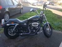Harley Davidson XL 1200 Sportster Costom Limited