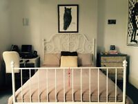 Large, bright double room available for 2 weeks only