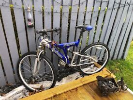 Mountain Bike (yes I still have it)