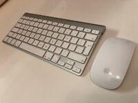 Apple A1314 Wireless Keyboard & A1296 Magic Mouse Set