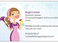 Kayla's clean domestic cleaner
