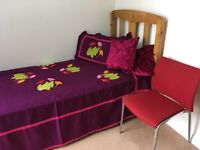 1 double room near Barking is to let